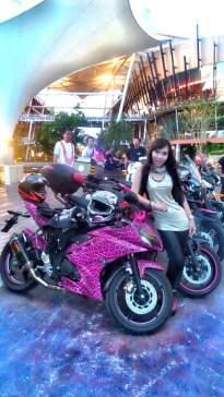 Yamaha R15 pink leopard_13.jpg