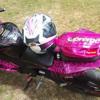 Yamaha R15 pink leopard_7.jpg