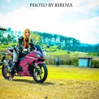 Yamaha R15 pink leopard_12.jpg