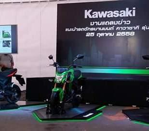 Kawasaki Z125.jpg